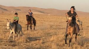 Peter, Sahale, and Suu ride again at Sinjar.