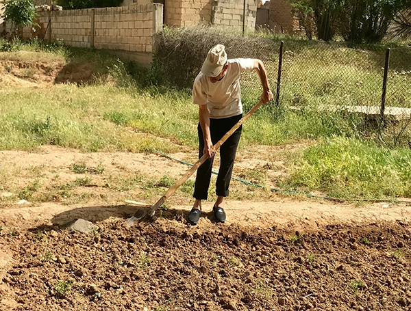 A Yezidi man prepares a garden to start again in an abandoned Christian village.