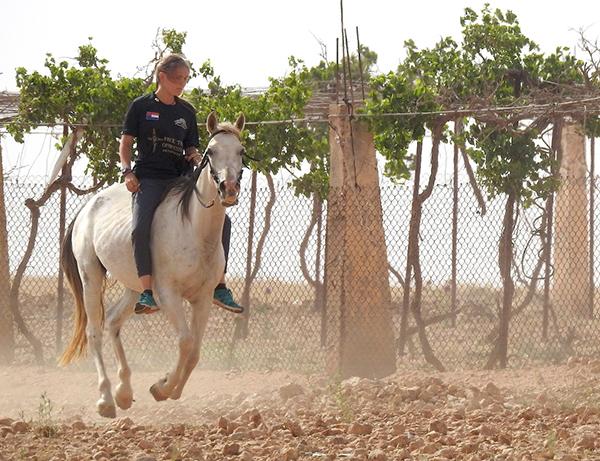Sahale gallops a Bedouin family's stallion