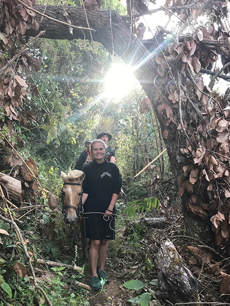 A light in the jungle.