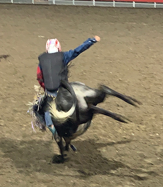 Pete at the Cody rodeo.