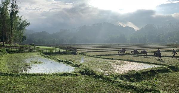 Morning beauty in Karen State, Burma.