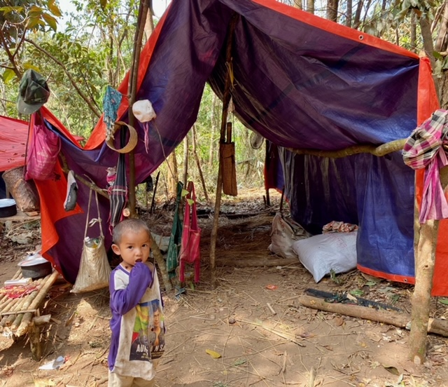 Temporary shelters built from tarps as they can get them